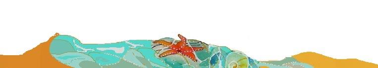 estrella-playa-002