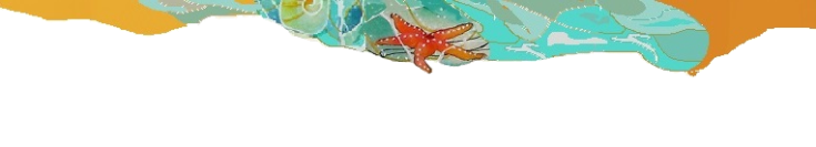 estrella-playa-003